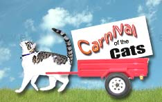 Victor Tabbycat  helped us move the Carnival